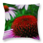Coneflowers Throw Pillow by Juergen Roth
