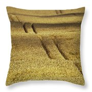 Cornfield Throw Pillow by Heiko Koehrer-Wagner
