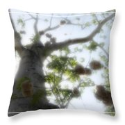 Cotton Ball Tree Throw Pillow by Douglas Barnard