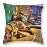 Country Living Throw Pillow by Evelina Kremsdorf