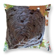 Crone Throw Pillow by Tracy Kelly