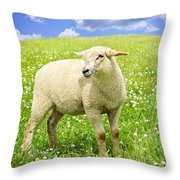 Cute young sheep Throw Pillow by Elena Elisseeva