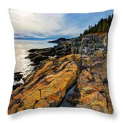 Cutler Coast Lichen Throw Pillow by Bill Caldwell -        ABeautifulSky Photography