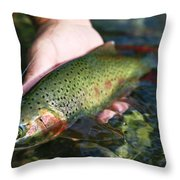 Cutthroat Trout On The Middle Fork Throw Pillow by Drew Rush