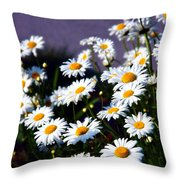 Daisies Throw Pillow by Lana Trussell