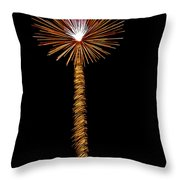 Dandelion Throw Pillow by Phill Doherty