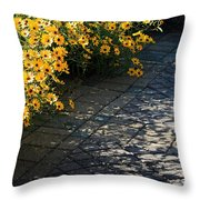 Dappled Light Throw Pillow by Suzanne Gaff