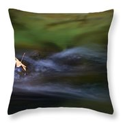 Dark Waters Throw Pillow by Mike  Dawson
