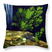 Dark Waters Throw Pillow by Patricia Griffin Brett
