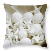 Decorative Seashells Throw Pillow by Kyle Rothenborg - Printscapes