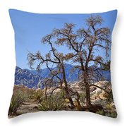 Desert Contrast Throw Pillow by Kelley King