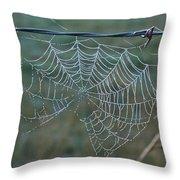 Dew On The Web Throw Pillow by Douglas Barnett