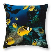 Diver And Butterflyfish Throw Pillow by Dave Fleetham - Printscapes