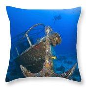 Divers Visit The Pelicano Shipwreck Throw Pillow by Karen Doody