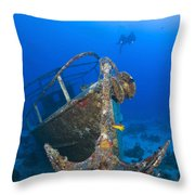 Divers Visit The Pelicano Shipwreck Throw Pillow by Karen Doody