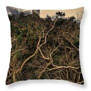 Dolwyddelan Castle Throw Pillow by Meirion Matthias