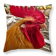 Dont Even Think About It Throw Pillow by Gwyn Newcombe