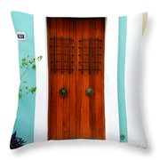 Door 51 Throw Pillow by Perry Webster