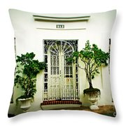 Door 59 Throw Pillow by Perry Webster