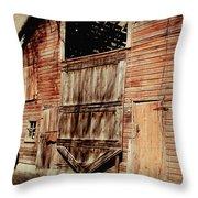 Doors Open Throw Pillow by Julie Hamilton