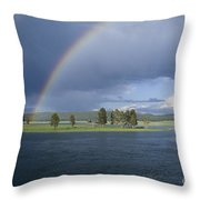 Double Rainbow At Alum Creek Throw Pillow by Sandra Bronstein