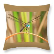 Dragonfly Throw Pillow by Everet Regal