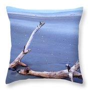 Driftwood Little St Simons Island Throw Pillow by Thomas R Fletcher
