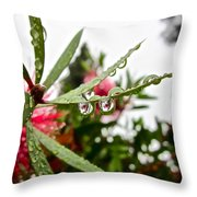 Drip And Drop Throw Pillow by Gwyn Newcombe
