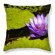 Droplets Throw Pillow by Teresa Mucha