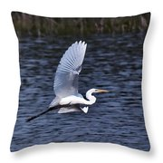 Egret Vi Throw Pillow by Gary Adkins
