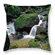 El Yunque National Forest Waterfall Throw Pillow by Thomas R Fletcher