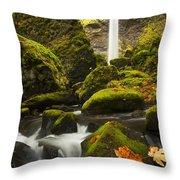 Elowah Autumn Throw Pillow by Mike  Dawson