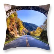 Emerging Throw Pillow by Rob Travis