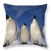 Emperor Penguins Antarctica Throw Pillow by Tui De Roy