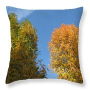 Equinox Throw Pillow by James Barnes