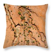 Erosion From Agricultural Use Throw Pillow by Michael Fay