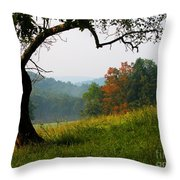 Evening In The Pasture Throw Pillow by Thomas R Fletcher