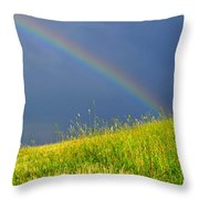 Evening Rainbow Over Pasture Field Throw Pillow by Thomas R Fletcher