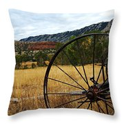 Ewing-snell Ranch 3 Throw Pillow by Larry Ricker