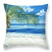 Exploring The Shallows Throw Pillow by Danielle  Perry