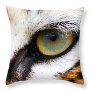 Eye of the Tiger Throw Pillow by Helen Stapleton