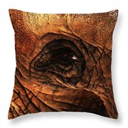 Eyes Through The Canyon Of Time Throw Pillow by Wingsdomain Art and Photography