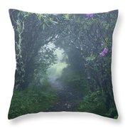 Fairy Path Throw Pillow by Rob Travis