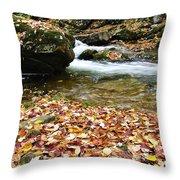 Fall Color Rushing Stream Throw Pillow by Thomas R Fletcher