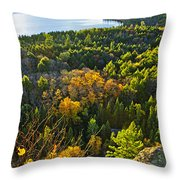 Fall Forest And Lake Top View Throw Pillow by Elena Elisseeva