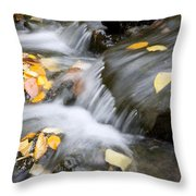 Fall Leaves In Rushing Water Throw Pillow by Craig Tuttle