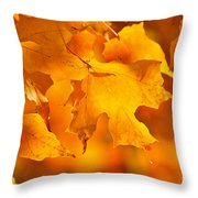 Fall maple leaves Throw Pillow by Elena Elisseeva
