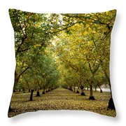 Fall Orchard Throw Pillow by Kathy Yates