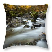 Fall Surge Throw Pillow by Mike  Dawson