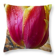 Fancy Tulip Throw Pillow by Garry Gay
